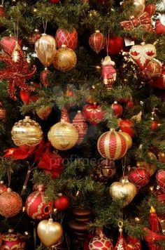 Detail shot, colourful Christmas ornaments hung on Christmas tree