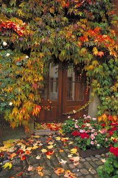 Germany Door in Rain