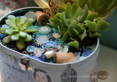 Succulent planter decorated with 28 Lilac Lane embellishments and buttons | May Flaum for Buttons Galore & More
