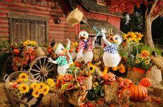 Premières infos sur le Festival #Halloween 2013 de #DisneylandParis. Une cavalcade … mais un lot de shows supprimés :'-(