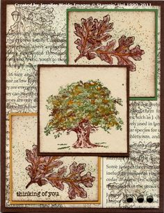 by Jennifer Weide.... SU Lovely as a Tree stamp. Gorgeous |Pinned from PinTo for iPad|