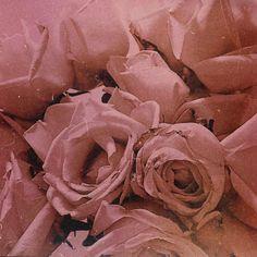 """Mi piace"": 731, commenti: 13 - Elisa Bellino THELADYCRACY.IT (@elisabellino) su Instagram: ""wabisabi #moodygrams #vintagehome #vintagestyle #roses #flowery #flowergram #pinkflowers #wabisabi"""