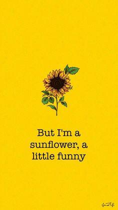 Cute Wallpaper: Sunflower Movie: Sierra Burgess Is A Loser Et Wallpaper, Tumblr Wallpaper, Wallpaper Iphone Cute, Aesthetic Iphone Wallpaper, Wallpaper Quotes, Cute Wallpapers, Aesthetic Wallpapers, October Wallpaper, Cute Backgrounds