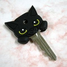 key cover. Edit a little to make it like toothless!