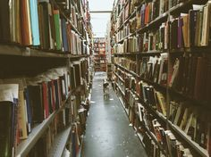 """""""There is more treasure in books than in all the pirate's loot on Treasure Island."""" -Walt Disney Jack's adventures in Kennys Bookshop & Art Gallery David Foster Wallace, Library Boards, Treasure Island, Bookstores, Libraries, Walt Disney, Art Gallery, Adventure, Dog"""