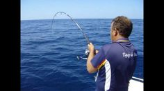 Jornada de pesca en El Rompido (Huelva) con la captura de 3 grandes corvinas de 20, 31 y 40kg, a bordo de la embarcación Jose Luis II del Club Náutico Río Piedras, en el día de su II Concurso de pesca del verano. http://pescarompido.blogspot.com.es/