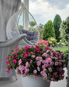 The Best 20 Garden Decoration Ideas Of 2019 Backyard Garden Design, Garden Landscape Design, Garden Landscaping, Apartment View, Kitchen Models, Flower Farm, Pool Designs, Boho Decor, Beautiful Gardens
