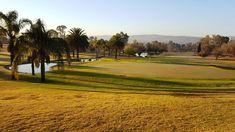 The everyday golfer plays Pretoria Golf Club Pretoria, Golf Clubs, Plays, Golf Courses, Articles, Country Roads, City, Games