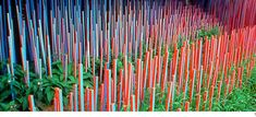Blue and Red stick garden, Metis International Garden festival