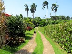 Cabrera, Dominican Republic