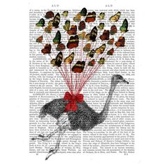 Picture showing FabFunky - Ostrich Flying With Butterflies, Antiquarian Book Print, 20.3 x 25.4cm
