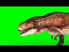 http://pixelboom.it/shop/3dproject/t-rex-run-various-angles/ Green Screen Tyrannosaurus T Rex Run Various Angles Loop - Footage PixelBoom