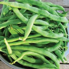 The Kentucky Wonder 125 Bean matures early than most bush beans and produces beans in clusters over a long season, it truly is above all others!