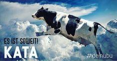 Die #kuh #fliegt