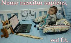 """Nemo nascitur sapiens, sed fit""  Ninguém nasce sábio, faz-se. :  No one is born wise, but he becomes wise"