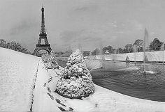 bastille day winters ca
