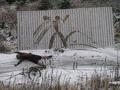 Winter Cycling http://ibeebz.com