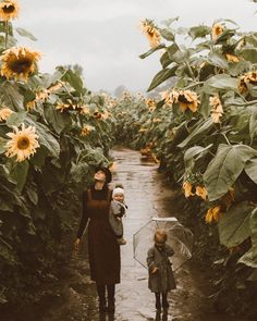 A Dark Day in the Sunflower Field — The Scarlett Door Outdoor Photography, Family Photography, Photography Ideas, Sunflower Fields, Sunflower Garden, How To Pose, Beautiful Family, Beautiful Life, Fall Family