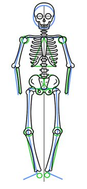 How to draw skeleton's full arm and leg bones