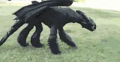Cool toothless cosplay…