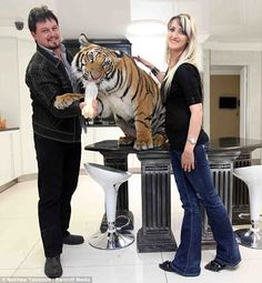 Thai Panda: He's just a big pussycat: Meet the couple who share their South African home... with a 27-stone Bengal tiger