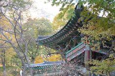 오서산 Mt. Oseo -byandrew #Korea #fall #trip #ramblr #Oseo