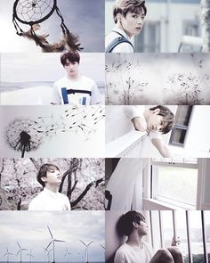 raindrops are never afraid of falling; ARMY