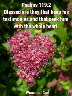 Psalm 119:2 KJV