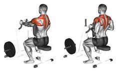 Exercising. Dumbbell Seated Shoulder Press Parallel Grip - Download From Over 62 Million High Quality Stock Photos, Images, Vectors. Sign up for FREE today. Image: 67872010