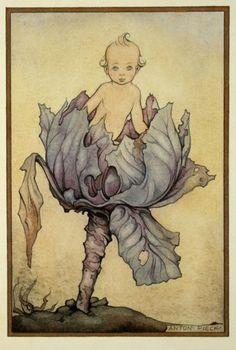'Geboortekaartje' (Birth Card)  by Dutch artist, illustrator Anton Pieck