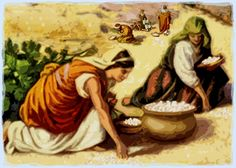 Biblical Perspicacity: What is Manna?