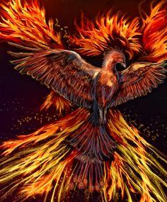 Where The Gold Bees Dream: Digital Painting: Phoenix Rising Phoenix Images, Phoenix Art, Phoenix Rising, Fenix Tattoo, Mythology Books, Flame Art, Unicorns And Mermaids, Bird Art, Mythical Creatures