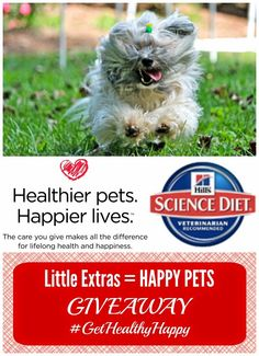 Enter to win #GetHealthyHappy dog or cat prize pack from Hill's Science Diet. Ends 10/7/14