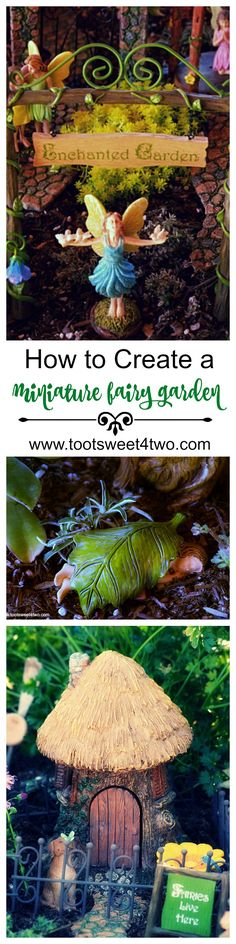 Create a magical miniature fairy garden that will bring years of delight and enchantment to your family and visitors! Learn how to make a fairy garden using collected whimsical fairy cottages, playful fairies, adorable wee animals, quirky fairy doors and fanciful fairy accessories plus pint-size flowers and plants. With the right supplies, you can have your fairy garden done and on display in a few hours with these easy tips and ideas!