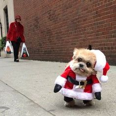"""There's Marnie. 