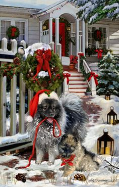 Keeshond Cristmas Greetings - by Margaret Sweeney