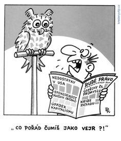 Pavel Kantorek - Co pořád čumíš jako vejr? Funny Memes, Jokes, Artist Names, Caricature, Humor, My Favorite Things, Comics, Fictional Characters, Husky Jokes