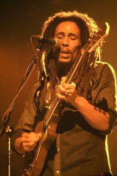 Reggae bob marleys van till grona lund