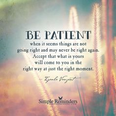 Be patient when it seems things are not going right and may never be right again. Accept that what is yours will come to you in the right way at just the right moment. — Iyanla Vanzant