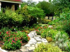 I'm not looking for a well manicured path walk.  I prefer walkways that have a little personality of their own!