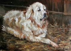 'The Barn Dog' - Original Oil Painting by Margot King