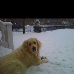 Cwaby in da snow