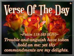 Psalm 119:143 KJV King James Bible