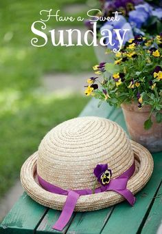 Pansies, violas, and a hat to match Welcome Spring, Spring Sign, Vibeke Design, Sweet Sundays, Spring Fever, My Secret Garden, Spring Is Here, Spring Has Sprung, Long Winter