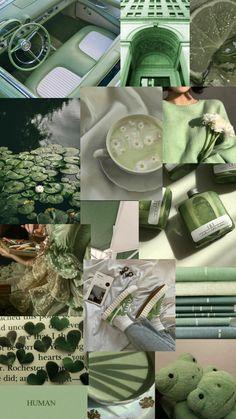 Pastel green/sage green wallpaper