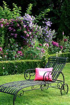 relax in the rose garden