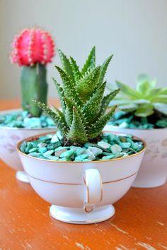 Tattooed Martha - Teacup Succulent Planters (10)