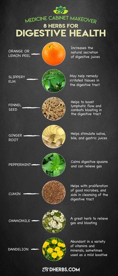 """Improve Digestive Health With These 8 Herbs """"If healthy digestion is what you seek, it has to start with the food you eat."""" Read more about these herbs that work for digestive health on. Herbal Remedies, Home Remedies, Stomach Ulcers, Coconut Health Benefits, Leaky Gut, Natural Cures, Natural Treatments, Natural Life, Natural Health Tips"""