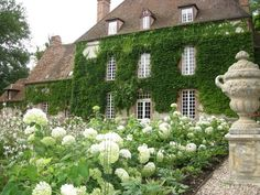 Ivy Clad Chateau ~ Deauville, France