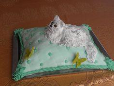 Persian Cat cakepins.com